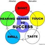 5 senses to success attraction attenuation prosperity