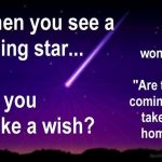 When you see a falling star do you make a wish or wonder