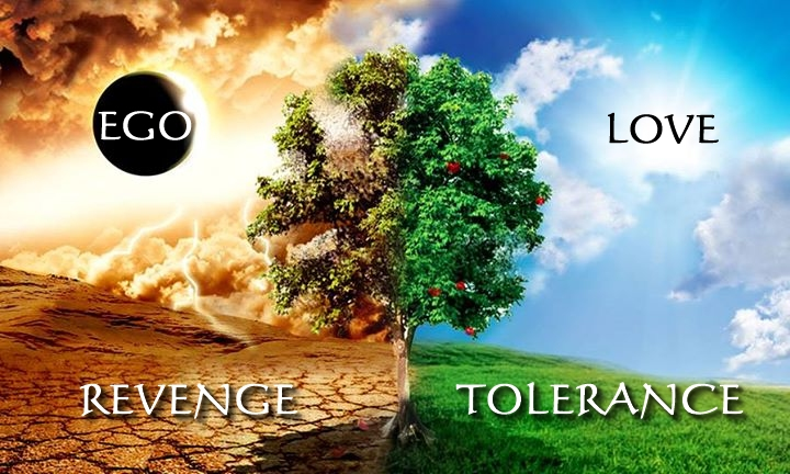 revenge-vs-tolerance-ego-and-love