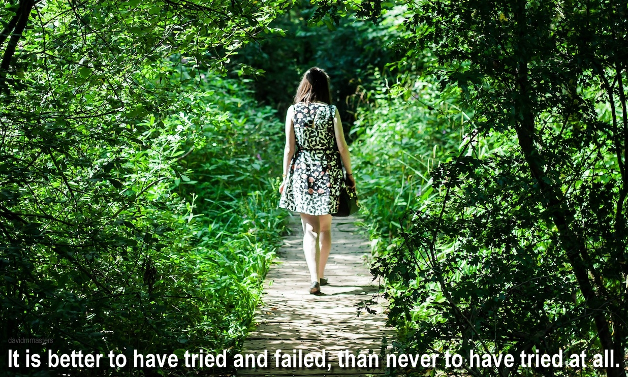 it-is-better-to-have-tried-and-failed-than-never-to-have-tried-at-all