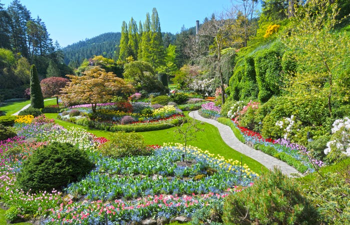 truth is like a garden with all varieties of flowers in bloom